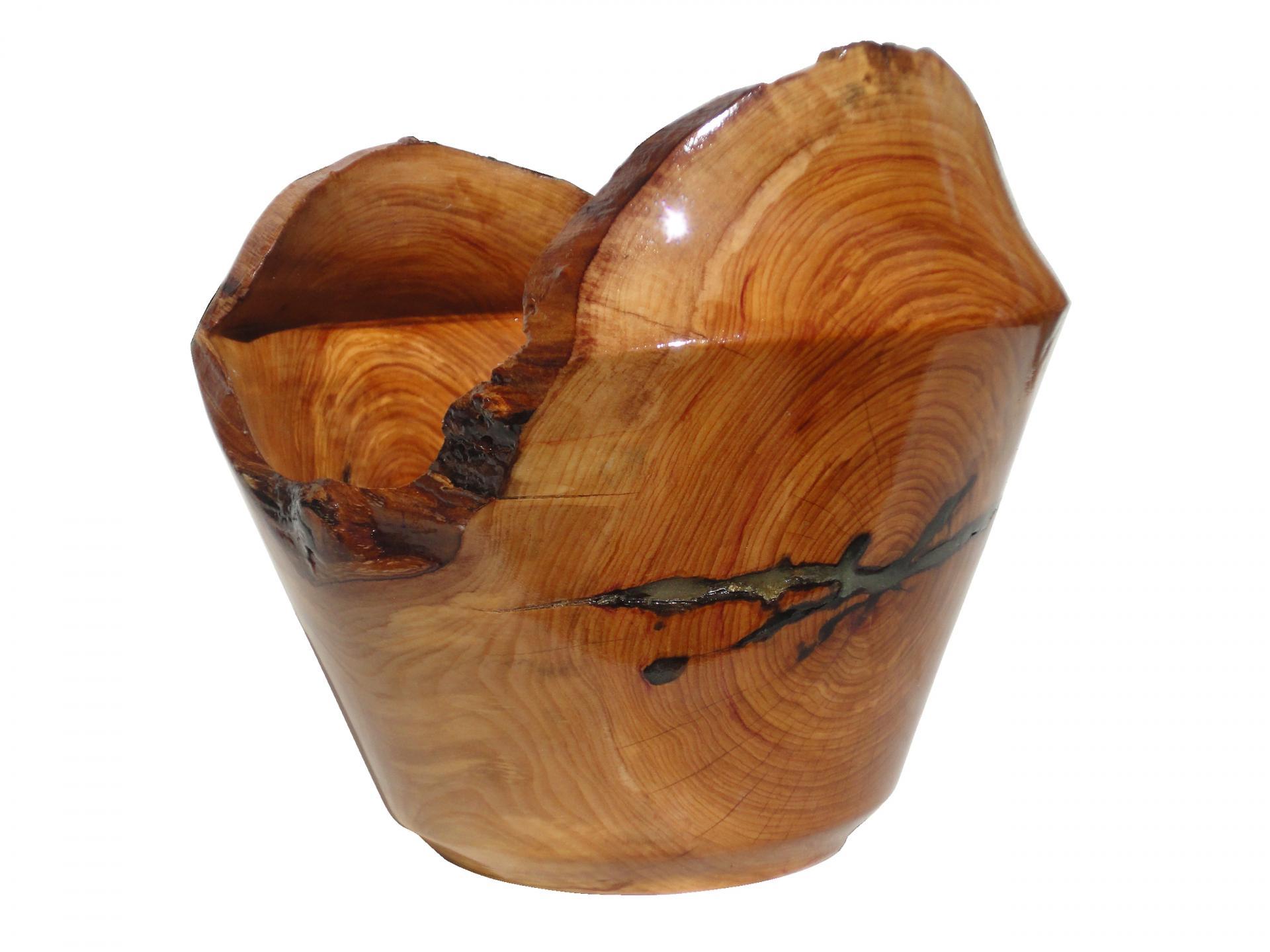 Vase lierre